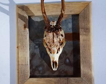 Carved and Burned Roe Skull