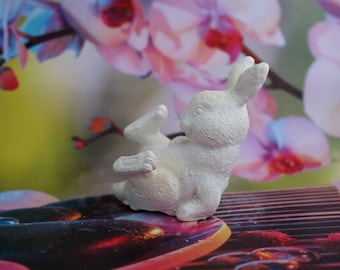 funny Bunny details with hair decoration