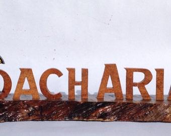Coach Name Plate