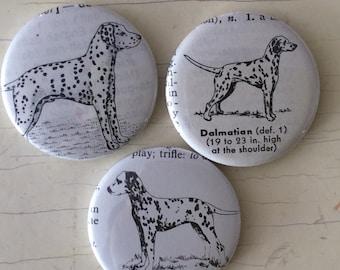 Dalmatian Vintage Dictionary Illustration Magnet Set of 3