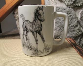 Ortagiri Pencil Sketch Colt Foal Horse Mug Cup - Gibson Greetings Cards Inc
