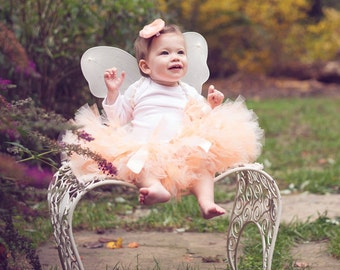 Fairy Dress   Peach Fairy Tutu Costume