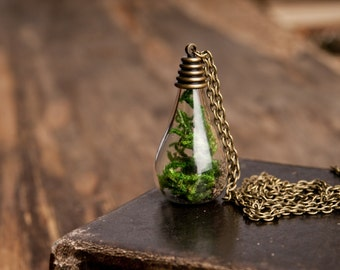 Real moss pendant, real moss necklace, nature necklace, green necklace, antique brass pendant, glass vial necklace, antique brass necklace
