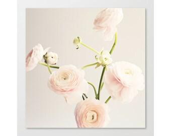 Ranunculus wall art, extra large wall art, minimalist art, framed wall art, scadinavian print, flower, floral, wall art canvas, white art