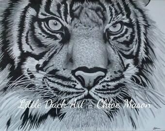 Animal Art - Tiger drawing