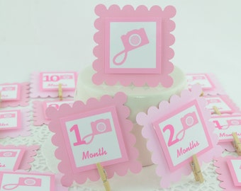 Camera Photo Banner, One Year In a Flash, Oh Snap!, First Birthday Banner, 12 months photo banner, Camera Theme, Camera Birthday, c-1213
