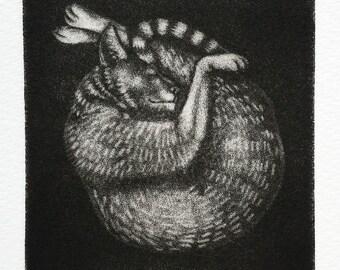 "Mezzotint - ""Percy Cat 1"" - original print by Nancy Farmer, unframed."