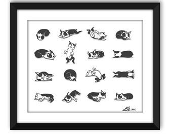 Sleeping Boogie (Boston Terrier) art print