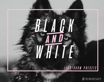 Adventure Pack Black & White Presets