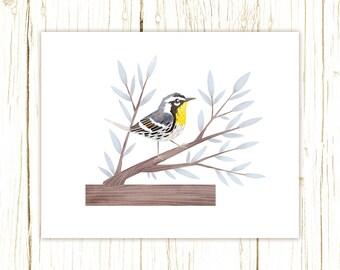 Yellow-Throated Warbler Print -- bird art -- colorful bird art 52 birds stephanie fizer coleman illustration