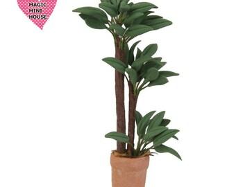 Miniature Plant in Pot