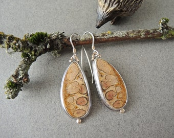 Fossil Earrings, Petrified Wood, Fossil Fern, Dangle Earrings, Sterling Silver, 14kt Gold, Rustic ON SALE