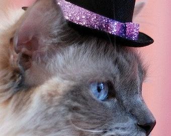 Chat haut chapeau - la Saint-Valentin chat chapeau - chapeau de fête des mères - scintillantes et lumineuses - Glitz et chapeau Glam pour les petits animaux de compagnie - chat accessoire