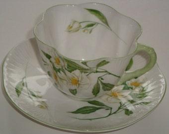 Shelley SYRINGA Dainty Shape Cup & Saucer - RARE #14063