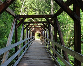 Walking Bridge, wooden bridge, fine art photo, color photograph, green trees, forest photo, many trees, trail, path, forest, picture, hiking