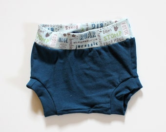 Blue and Dino Word Bummies, in sizes 3-12 months, Summer Boys Shorties