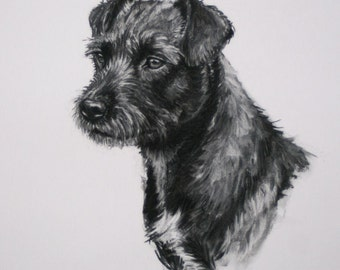 Patterdale Terrier dog art dog gift dog lover gift LE print from an original charcoal drawing available unmounted or mounted ready to frame