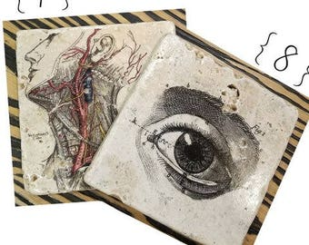 Vintage Anatomy Ribcage Coasters, 4 Piece Set, Tumbled Marble (OR MIX & MATCH)