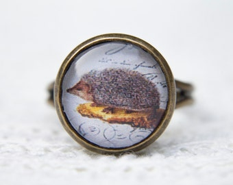 Hedgehog Ring, Animal Ring, Nature, Autumn, Woodland, Glass Dome Ring, Statement Ring, Adjustable Ring