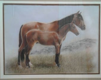 Vintage Mare And Colt /Foal Painting on Paper/Unsigned