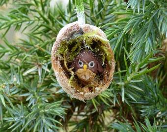 Christmas Walnut Shell Decoration: Tawny Owl