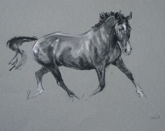 SALE Original horse art equine art energy and movement equine horse charcoal and chalk movement art drawing 'Trot' by H Irvine