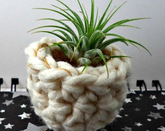 White with Gold at the Top Air Plant Pot