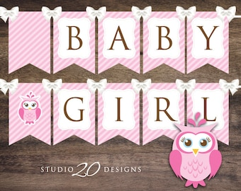 Instant Download Pink Owl Baby Shower Banner, Pink Brown Baby Girl Bunting Banner, Printable Bunting Flags, Baby Girl Pennant Banner 23E