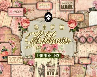 Paper Ephemera Kit - Life Abloom Ephemera Pack - 8 Page Instant Download - altered art kit, junk journal kit, blank journal cards, floral