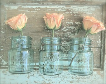 "Shabby Cottage Chic, French Country Kitchen Art, Rose Photograph, Aqua Mason Jar Rustic Decor, Home and Garden,  Farmhouse Art- ""Rose Trio"""