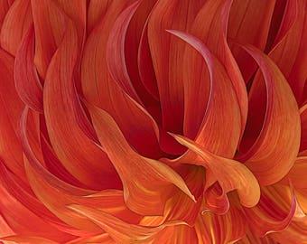 Dahlia Image, Flower Image, Garden Art, Garden Photos, Fire Photo,