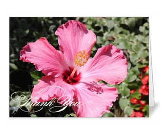 Hibiscus Thank You Cards