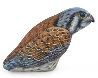 An Incredible Male Kestrel Hand Painted on a Sea Rock! A Unique Piece of Art and a great Gift Idea for all of you, Nature Lovers!