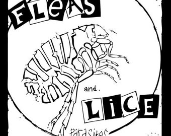 Fleas And Lice   PATCH