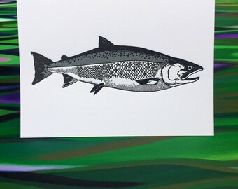 "Coho Greeting Cards - 6 Pack - 4"" X 6"" size - Letter Press - on Heidelberg - Strathmore Paper - Envelopes - by The Fish Mill"