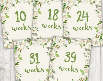 Printable Pregnancy Weeks, Weekly Pregnancy Photo Prop, Pregnancy Week Signs, Instant Download 8.5x11, Ivory & Green Flowers, Weeks 4 - 42