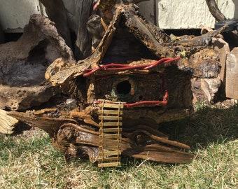 Bird House/Dwelling