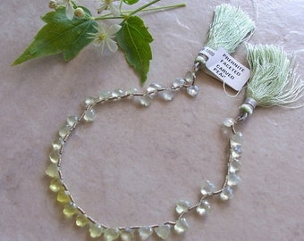 """ON SALE AAA Lemon Prehnite Gemstone Faceted Notched Edge Very Small Leaf Briolette Beads 8"""" Strand 5mm-6mm"""
