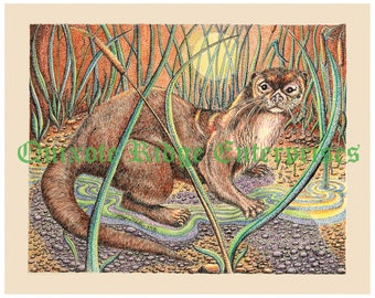 "8""x10"" Otter Print from the original pen and ink by Don Magistrelli"