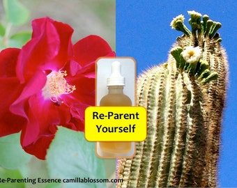 Re-Parenting Essence, Flower Essence, Inner Child Healing, Vibrational Essence, Saguaro Essence, Rose, Mother Father Healing, Self-love