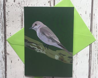 Spotted Flycatcher greeting card   bird greeting card    blank inside