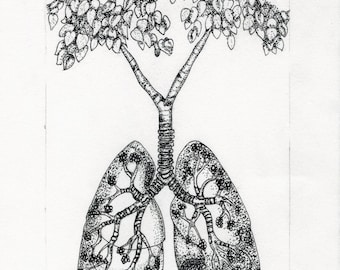 "Anatomical ""Lungs"" Flora"