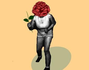 Sillyhead Rose