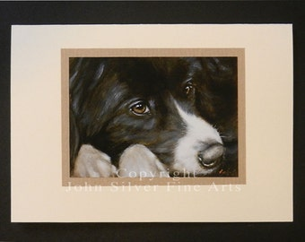 Border Collie Dog Portrait Hand Made Greetings Card. From Original Paintings by JOHN SILVER. GCBC266