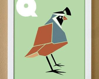 alphabet letter Q, quail, custom colors, children's letter art, letter print, nursery art, kids initials, 4X6, 5X7, 8x10