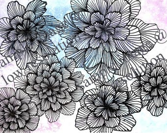 Floral Art Line Drawing, Digital Download, Botanical Wall Art, Black and White Line Drawing, Watercolor