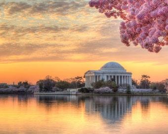 Cherry Blossom Fotografie - Washington DC drucken - Jefferson Memorial Foto - DC Fotografie - Sunrise - Kirschblütenfest