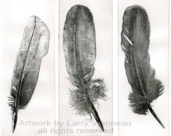 ANGEL, FEATHER, Raven artwork , Raven, crow,  etching, dry point and engraving. 8.5 x 3.5 inch 2011