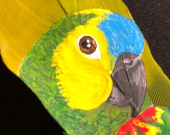 Hand Painted Blue Fronted Amazon Parrot on Feather
