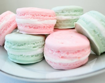 French Macaron gift set - gift soap -  gift for her - food soap - 5.5 oz - pastel pink and mint green - raspberry lime